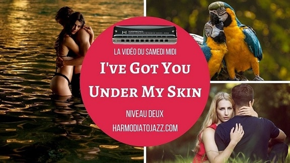 [DERIVES] I've Got You Under My Skin